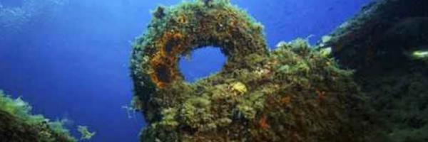 Plongees sur les epaves