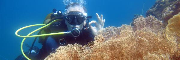 Plongeur sainte marie